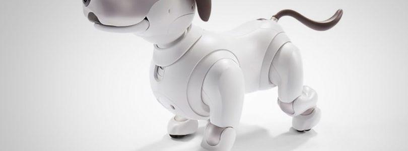 ¿Quieres una mascota? Sony empezará a vender Aibo en Septiembre