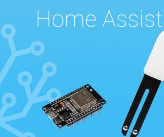 Integración de Mi Flora en Home Assistant con ESPHome y un ESP32